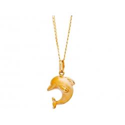 Złoty delfinek: G-P041
